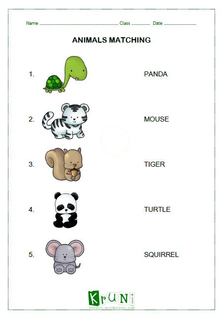 ANIMALS MATCHING